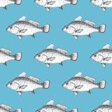 Διανυσματικό άνευ ραφής σχέδιο με τα ψάρια Στοκ Εικόνες