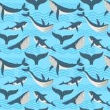 Διανυσματικό άνευ ραφής σχέδιο με τη φάλαινα στα ωκεάνια κύματα ελεύθερη απεικόνιση δικαιώματος