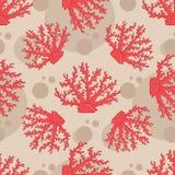 Διανυσματικό άνευ ραφής σχέδιο με το κοράλλι Στοκ Εικόνες