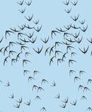 Διανυσματικό άνευ ραφής σχέδιο πουλιών με τα γραφικά στοιχεία για την εκτύπωση στο ύφασμα Ελεύθερη απεικόνιση δικαιώματος