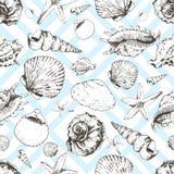 Διανυσματικό άνευ ραφής σχέδιο των seashels Απομονωμένος στο ανοικτό μπλε γεωμετρικό καθιερώνον τη μόδα υπόβαθρο ελεύθερη απεικόνιση δικαιώματος