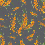 Διανυσματικό άνευ ραφής σχέδιο Seabuckthorn αφηρημένη ανασκόπηση floral Στοκ Εικόνες