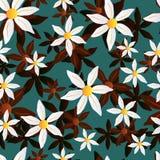Διανυσματικό άνευ ραφής chamomile σχέδιο απεικόνιση αποθεμάτων