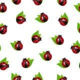 Διανυσματικό άνευ ραφής Ladybug Στοκ Φωτογραφίες