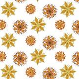 Διανυσματικό άνευ ραφής mandala σχεδίων για τις τυπωμένες ύλες, μπλούζες, Ιστός Στοκ Εικόνες