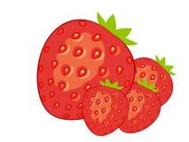 Διανυσματικό άσπρο υπόβαθρο φραουλών ελεύθερη απεικόνιση δικαιώματος