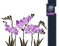 Διανυσματικό έμβλημα χαιρετισμού λουλουδιών με το freesia και την κορδέλλα Διεθνής ημέρα γυναικών ` s Επίπεδο ύφος ελεύθερη απεικόνιση δικαιώματος