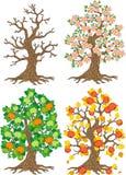 Διανυσματικό δέντρο της Apple Εποχή δέντρων Στοκ Φωτογραφία