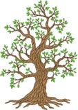 Διανυσματικό δέντρο της Apple Συλλογή δέντρων Εποχή δέντρων Στοκ Φωτογραφία