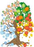 Διανυσματικό δέντρο της Apple Συλλογή δέντρων Εποχή δέντρων Στοκ εικόνες με δικαίωμα ελεύθερης χρήσης