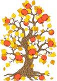 Διανυσματικό δέντρο της Apple Συλλογή δέντρων Εποχή δέντρων Στοκ Εικόνα