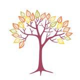 Διανυσματικό δέντρο φθινοπώρου Στοκ φωτογραφία με δικαίωμα ελεύθερης χρήσης