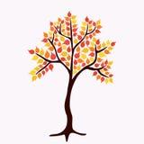 Διανυσματικό δέντρο φθινοπώρου Στοκ Φωτογραφία