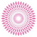 Διανυσματικό αφηρημένο ρόδινο λουλούδι κύκλων Στοκ Εικόνες