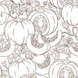 Διανυσματικό βοτανικό σχέδιο με τις κολοκύθες, τα λουλούδια και τα φύλλα Στοκ Φωτογραφίες