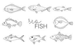 Διανυσματικό γραπτό σύνολο ψαριών διανυσματική απεικόνιση