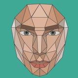 Διανυσματικό γραφικό πρόσωπο πολυγώνων ενός κοριτσιού Στοκ Εικόνες