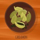 Διανυσματικό εικονίδιο σχεδίου Cardamon επίπεδο Στοκ Εικόνες