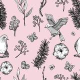 Διανυσματικό εκλεκτής ποιότητας floral άνευ ραφής σχέδιο άνοιξη με τα πουλιά, τους κλάδους έλατου, το βαμβάκι, τα λουλούδια και τ ελεύθερη απεικόνιση δικαιώματος