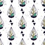 Διανυσματικό ζωηρόχρωμο συρμένο χέρι άνευ ραφής σχέδιο με τα τρίγωνα, κάκτοι και succulents στα terrariums Στοκ Εικόνα