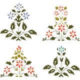 Διανυσματικό καθορισμένο ανθίζοντας φυτό απεικόνισης με τα λουλούδια και το φύλλο Στοκ εικόνα με δικαίωμα ελεύθερης χρήσης
