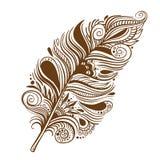 Διανυσματικό καφετί φτερό Στοκ φωτογραφία με δικαίωμα ελεύθερης χρήσης