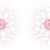 Διανυσματικό λουλούδι νταλιών. Στοκ Εικόνες