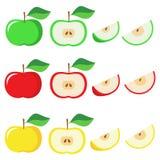 Διανυσματικό μήλο Στοκ Εικόνες