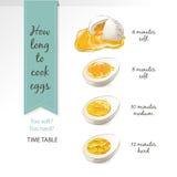 Διανυσματικό μισό, τεμαχισμένα αυγά Στοκ Εικόνες