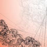 Διανυσματικό λουλούδι απεικόνισης στο ύφος του χεριού που σύρεται Στοκ Φωτογραφία