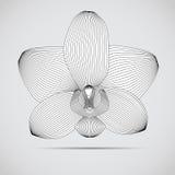 Διανυσματικό λουλούδι ορχιδεών. Απεικόνιση για το σας Στοκ Φωτογραφία