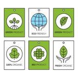 Διανυσματικό πράσινο σύνολο ετικετών για τα οργανικά προϊόντα, τα τρόφιμα και τα καλλυντικά διανυσματική απεικόνιση