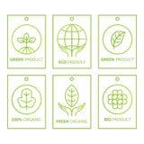 Διανυσματικό πράσινο σύνολο ετικετών στο γραμμικό ύφος για τα οργανικά προϊόντα, τα τρόφιμα και τα καλλυντικά ελεύθερη απεικόνιση δικαιώματος