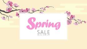 Διανυσματικό πρότυπο εμβλημάτων πώλησης άνοιξη ανθών sakura watercolor Ρόδινο λουλουδιών κατάστημα Ιστού αφισών κλάδων προωθητικό Στοκ Εικόνες