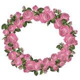 Διανυσματικό πλαίσιο των ρόδινων τριαντάφυλλων Στοκ εικόνα με δικαίωμα ελεύθερης χρήσης