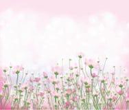 Διανυσματικό ρόδινο υπόβαθρο λουλουδιών Στοκ φωτογραφίες με δικαίωμα ελεύθερης χρήσης