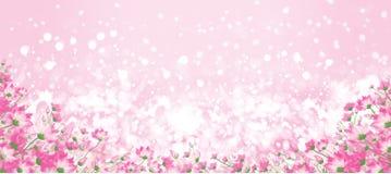 Διανυσματικό ρόδινο floral υπόβαθρο bokeh Στοκ Εικόνες