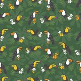 Διανυσματικό σκούρο πράσινο τροπικό υπόβαθρο σχεδίων γιορτών γενεθλίων άνευ ραφής Με τα toucan πουλιά Τελειοποιήστε για το ύφασμα ελεύθερη απεικόνιση δικαιώματος