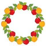 Διανυσματικό στεφάνι με τα μήλα Διανυσματική απεικόνιση μήλων απεικόνιση αποθεμάτων
