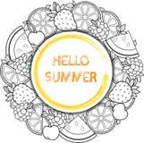 Διανυσματικό στρογγυλό πλαίσιο φρούτων Διανυσματικά στοιχεία Καρπούζι, κεράσι, σμέουρο, βακκίνιο, φράουλα, πορτοκάλι, λεμόνι, και Στοκ Φωτογραφία
