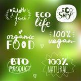 Διανυσματικό συρμένο χέρι σύνολο vegan και φυσικών ετικετών Οικολογικός και οργανική τροφή Στοκ φωτογραφίες με δικαίωμα ελεύθερης χρήσης