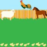 Διανυσματικό σχέδιο καρτών με τα ζώα αγροκτημάτων Στοκ φωτογραφία με δικαίωμα ελεύθερης χρήσης
