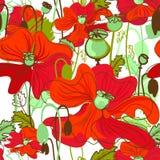 Διανυσματικό σχέδιο παπαρουνών κόκκινο και πράσινο διανυσματική απεικόνιση