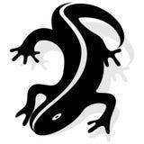 Διανυσματικό σχέδιο Salamander Στοκ Φωτογραφία
