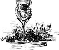 Ποτήρι του κρασιού και των σταφυλιών ελεύθερη απεικόνιση δικαιώματος