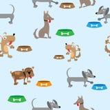 Διανυσματικό σχέδιο σκυλιών Στοκ Εικόνες