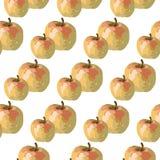 Διανυσματικό σχέδιο της Apple Watercolor Στοκ Εικόνες