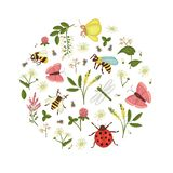 Διανυσματικό σύνολο άγριων λουλουδιών, μέλισσα, bumblebee, λιβελλούλη, ladybug, σκώρος, πεταλούδα που πλαισιώνεται στον κύκλο ελεύθερη απεικόνιση δικαιώματος