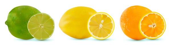 Διανυσματικό σύνολο ασβέστη, πορτοκαλιού και λεμονιού εσπεριδοειδούς Απομονωμένα τεμαχισμένα εσπεριδοειδή στο άσπρο υπόβαθρο Μισά απεικόνιση αποθεμάτων