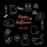 Διανυσματικό σύνολο γατών αποκριών Συρμένη χέρι άσπρη κιμωλία στο μαύρο πίνακα doodles που απομονώνεται στο Μαύρο Παχιές γάτες, κ διανυσματική απεικόνιση
